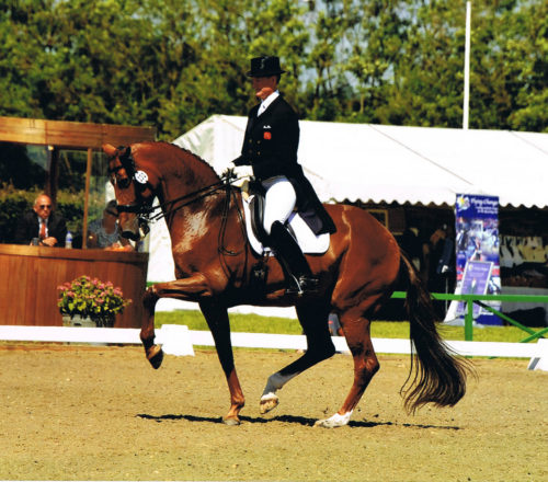 Richard Barratt Dressage rider & trainer
