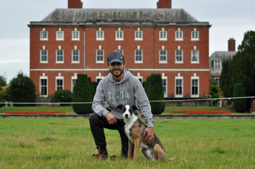 Ross Payne,  a flyball handler with ambition