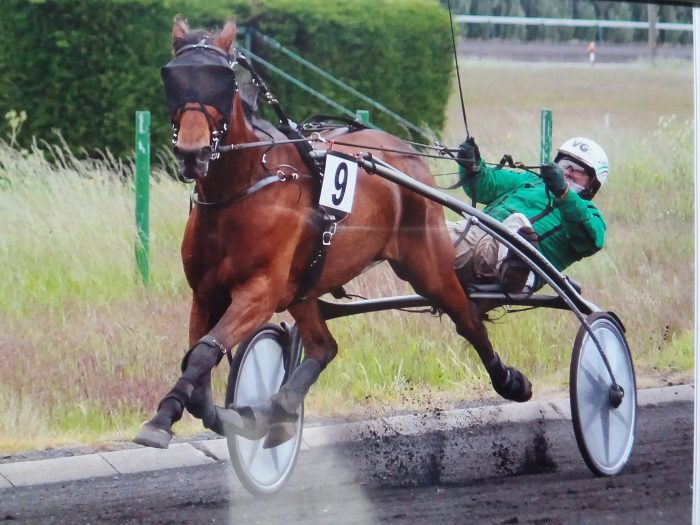 Betti Michielsen Trotting Racing