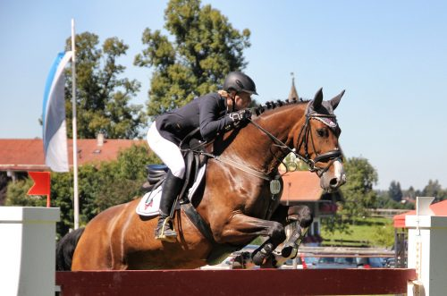 Rider Nutrition Showjumper